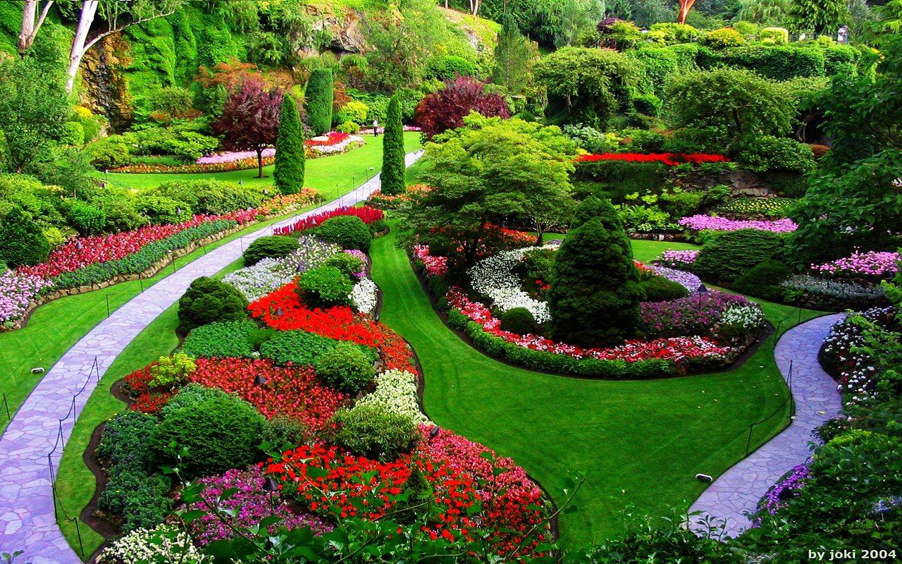 Quelques conseils pour r aliser un jardin paradisiaque for Jardin jardin 2017