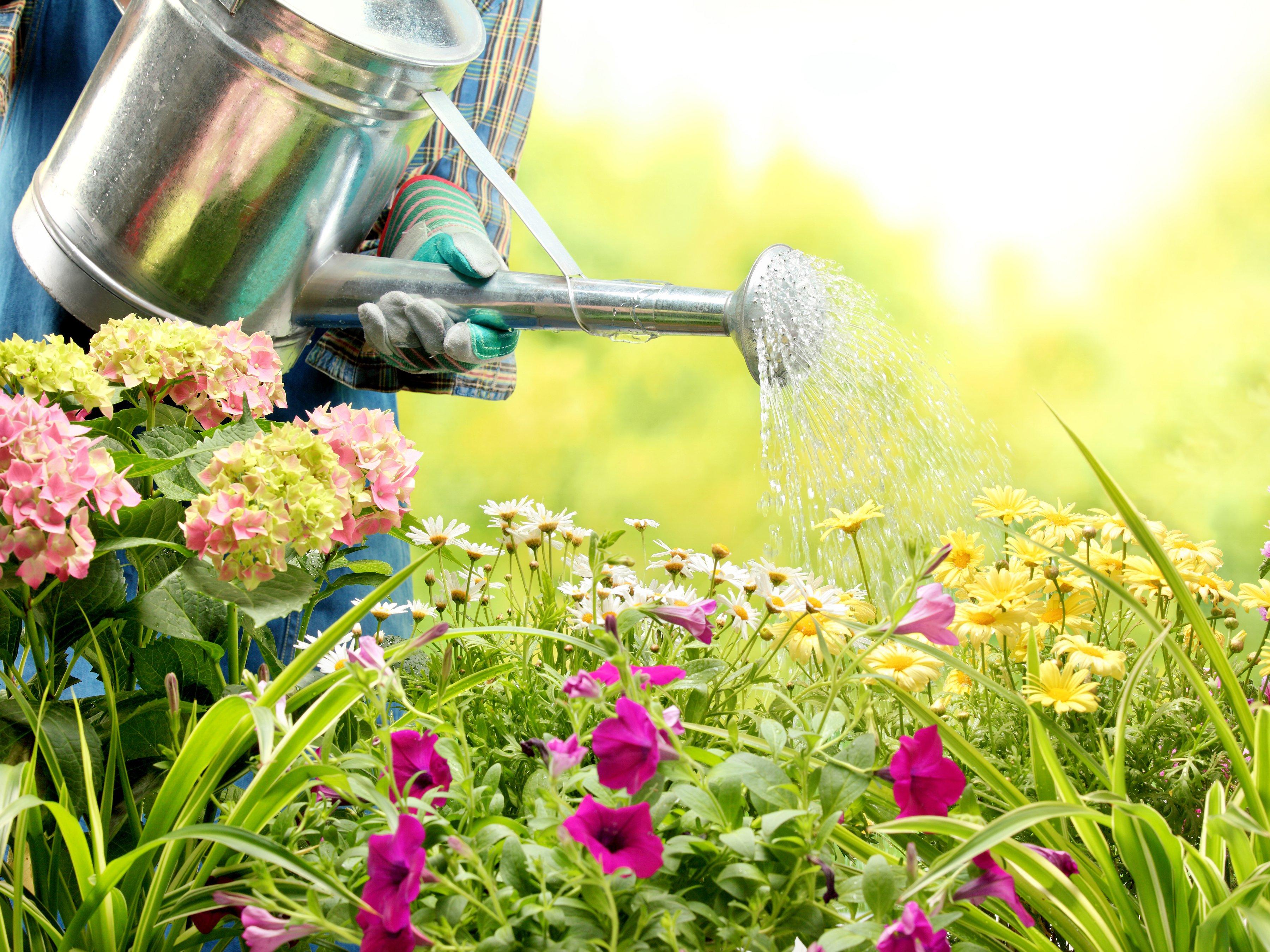 Comment Faire Un Beau Jardin comment faire pour avoir un beau jardin?   bricolo blogger