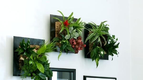 Tableaux végétaux  la tendance déco qui s invite chez vous   Bricolo Blogger 8b47dba9b2e