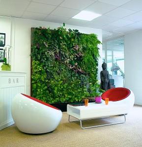 Réaliser un mur végétal chez soi
