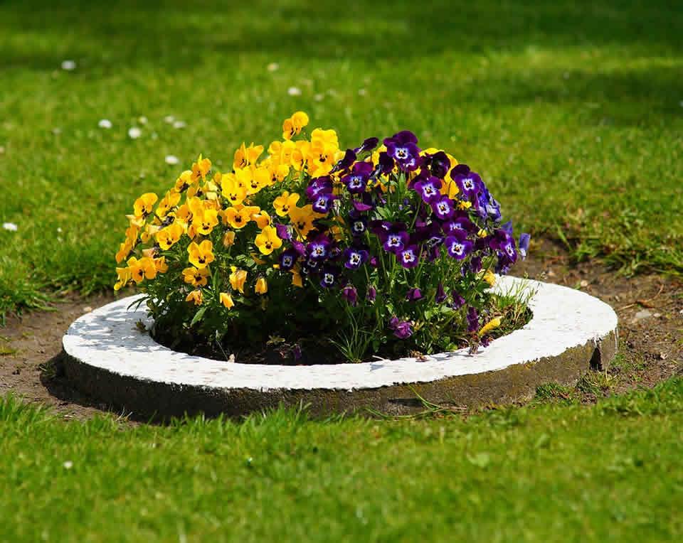 bien entretenir votre jardin