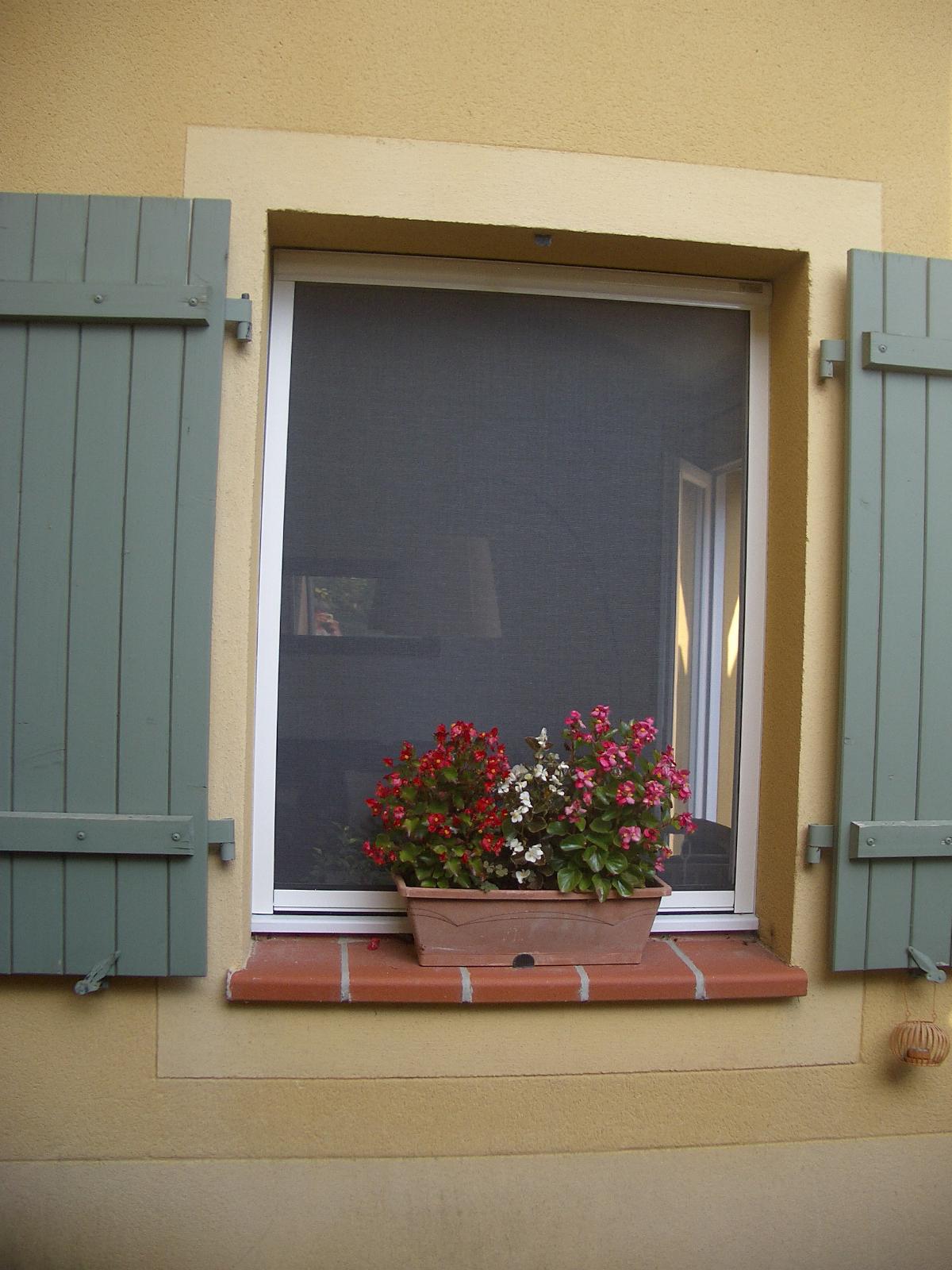 installer une moustiquaire sur les fenêtres