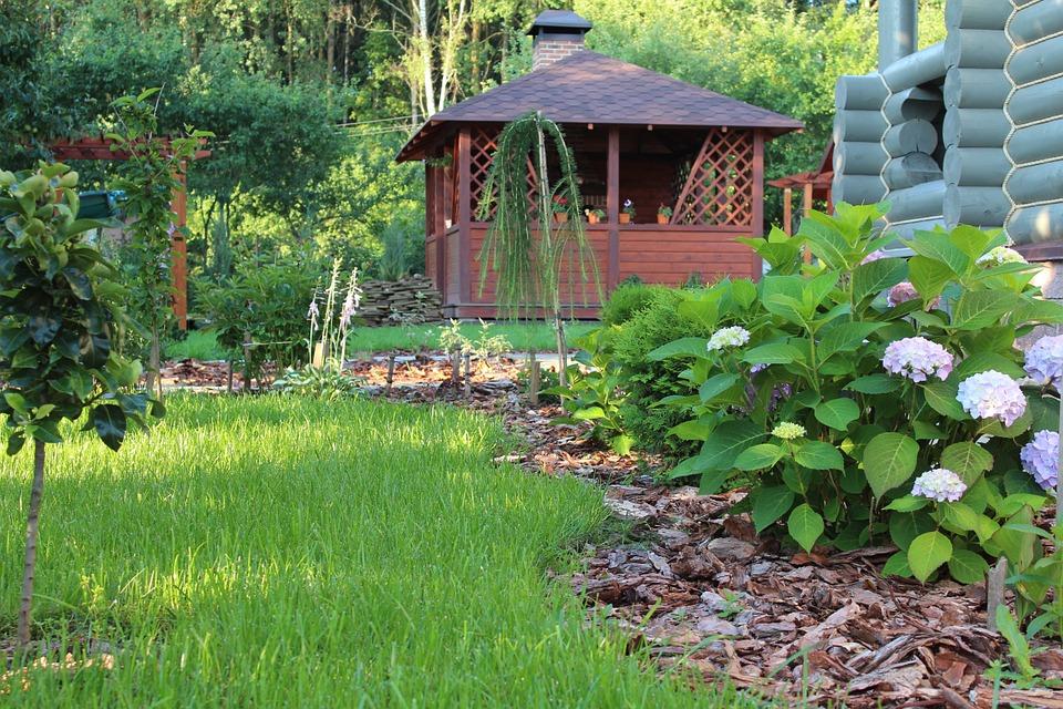 Aménagement paysager d'un jardin harmonieux